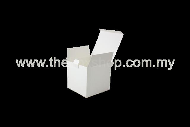 FTI 0053 - 105 x 105 x 100 mm (H)